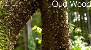 Oud-wood
